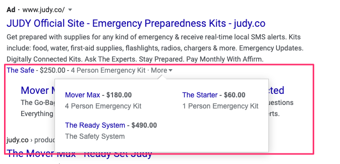 judy-google-search-ad-example-3