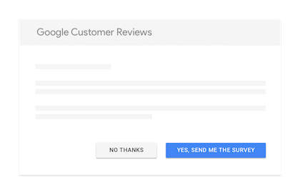 google-customer-review-survey-example