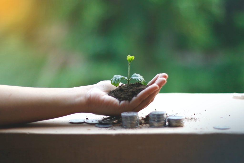 ecommerce marketing growth plant