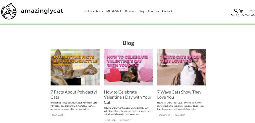 eCommerce blog example pet store